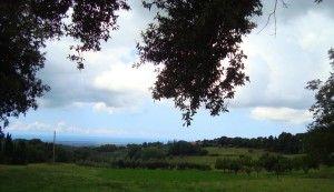 Пейзаж Биббона Тоскана