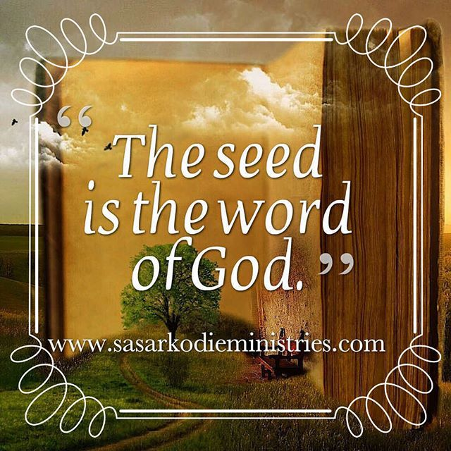 """Now the parable is this: The seed is the word of God.(Luke 8:11 RSV)  And he said """"The kingdom of God is as if a man should scatter seed upon the ground (Mark 4:26 RSV). To help us understand how God's Word and His kingdom operate Jesus used a seed. And normally for a seed to grow and produce a harvest takes significant time. However it is also clear that God can speed up natural processes.  Here are three examples from Scripture: Aaron's rod that grew almonds overnight a plant that grew…"""