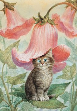 N B Cards Limited - Vladimir Rumyantsev Cats 2