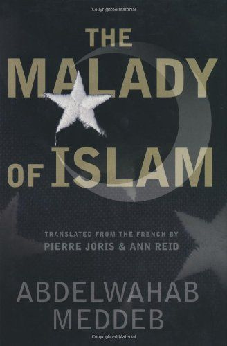 The Malady Of Islam by Abdelwahab Meddeb https://www.amazon.com/dp/0465044352/ref=cm_sw_r_pi_dp_x_HIM4ybCGZP4PC