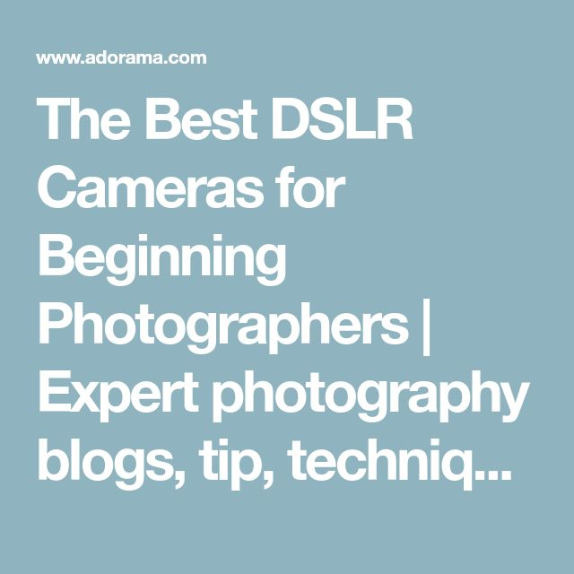 The Best DSLR Cameras for Beginning Photographers | Expert photography blogs, tip, techniques, camera reviews - Adorama Learning Center
