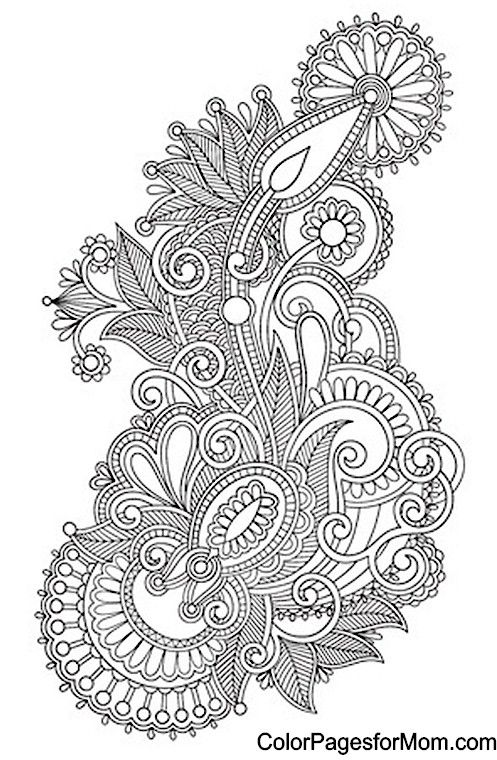 Colouring For Adult Suggestions : Best 25 paisley coloring pages ideas on pinterest