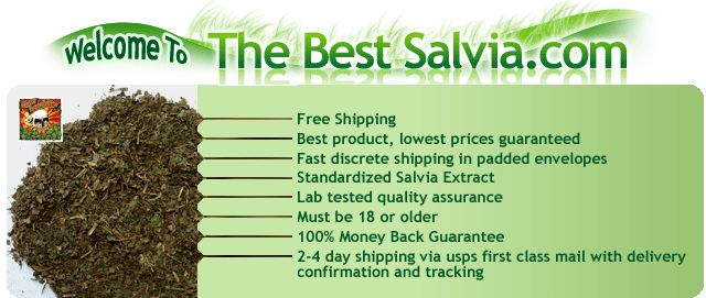 If you really want to experience the #Salvia effect, make sure what form you need to buy along with the proper knowledge of its uses. This absolutely amazing product of salvia can be bought online also at affordable prices, which is highly beneficial for the common people.