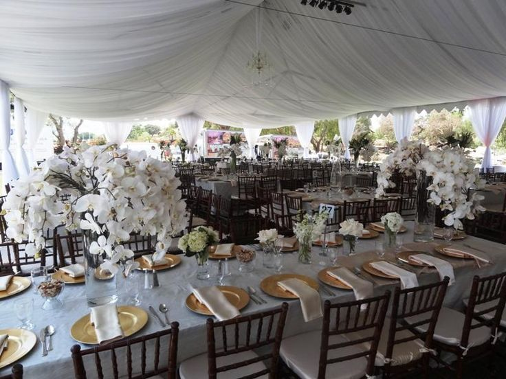 17 best images about mahogany chiavari chairs on pinterest receptions wedding events and diy