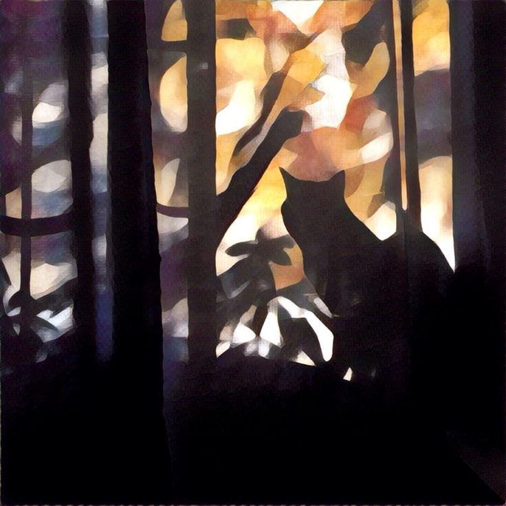The cat in the jungles. This #painting was made from a simple photo with a #Prisma app. #Illustration #Cat #Art #Animals #drawing