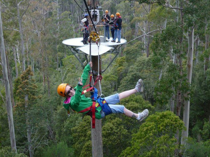 Zip lining in Tasmania
