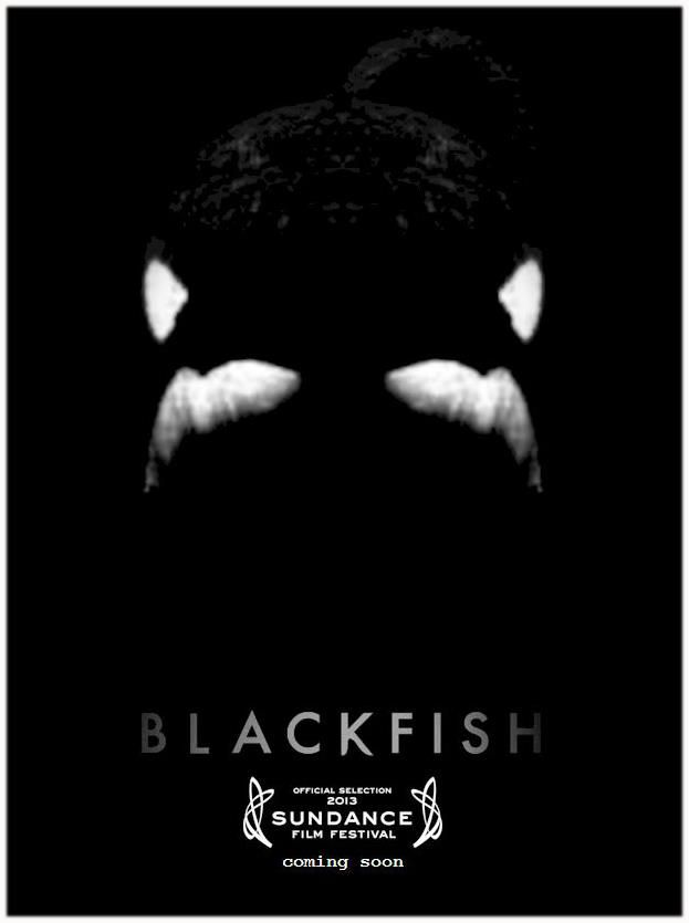 Blackfish - Just saw this amazing documentary - Very informative and moving. Don't want to go back to Seaworld ever again!