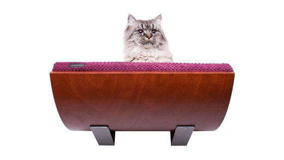 Curve cat bed cat perch oval shape mounted to the by cosyanddozy