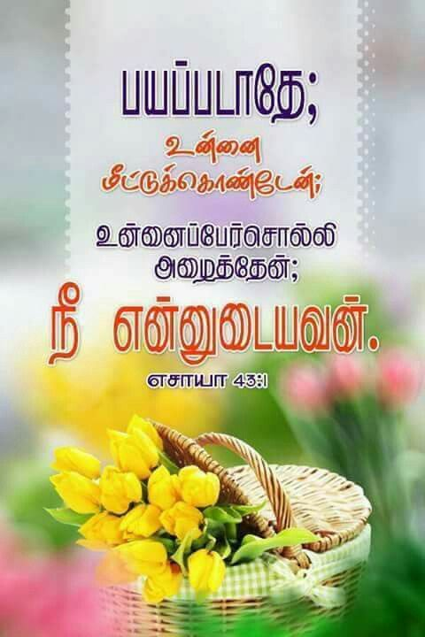 Best 25+ Tamil bible words ideas on Pinterest | Tamil ...