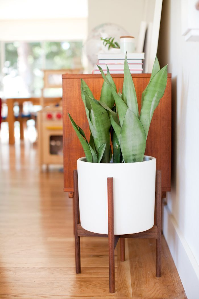 mid century planter | looks like the West Elm one that's no longer available!