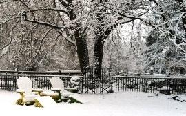 Adirondack chairs near my Victorian Garden dressed in snow.