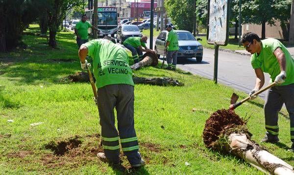 San Fernando realiza los trabajos previos al ensanche y renovación de la calle Uruguay
