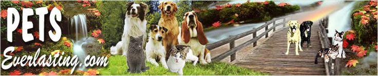 Petseverlasting Pet Loss Community,Rainbow Bridge,Pet Bereavement,Memorial Pet