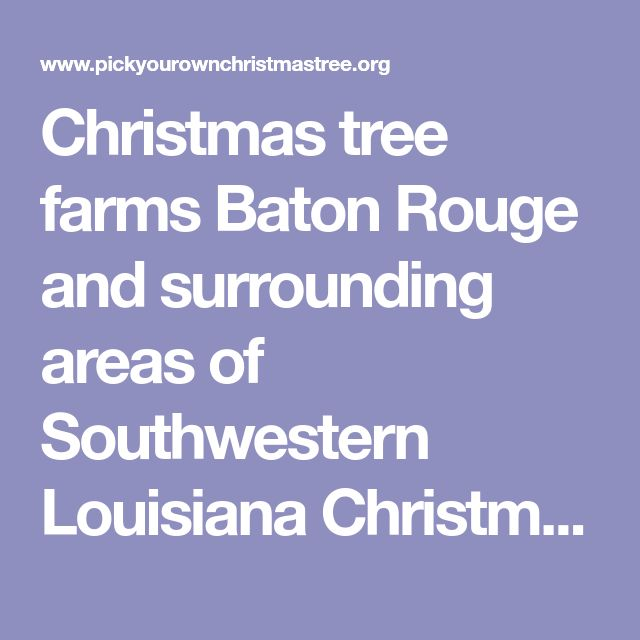 Christmas tree farms Baton Rouge and surrounding areas of Southwestern Louisiana Christmas Tree Farms: choose-and-cut Christmas trees, Tree lots with pre-cut trees, stands, sleigh rides, hay rides and related winter events and fun!