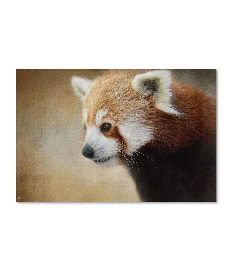 Jai Johnson Red Panda Watching Canvas Art 19 X 12 X 2 Multi Panda Watch Red Panda Panda