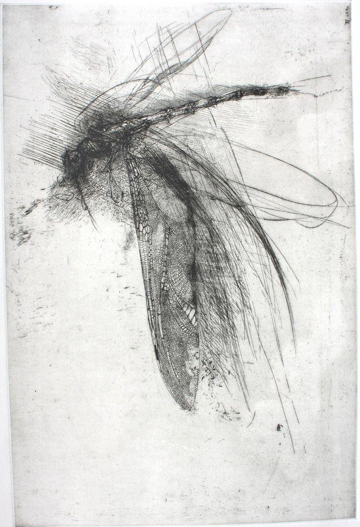 Libellula con grande ala - Lanfranco QUADRIO