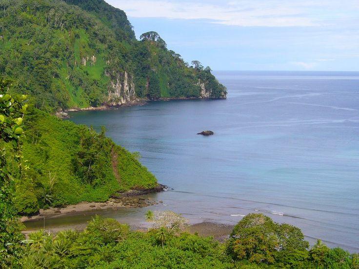 Isla del Coco MJ 048