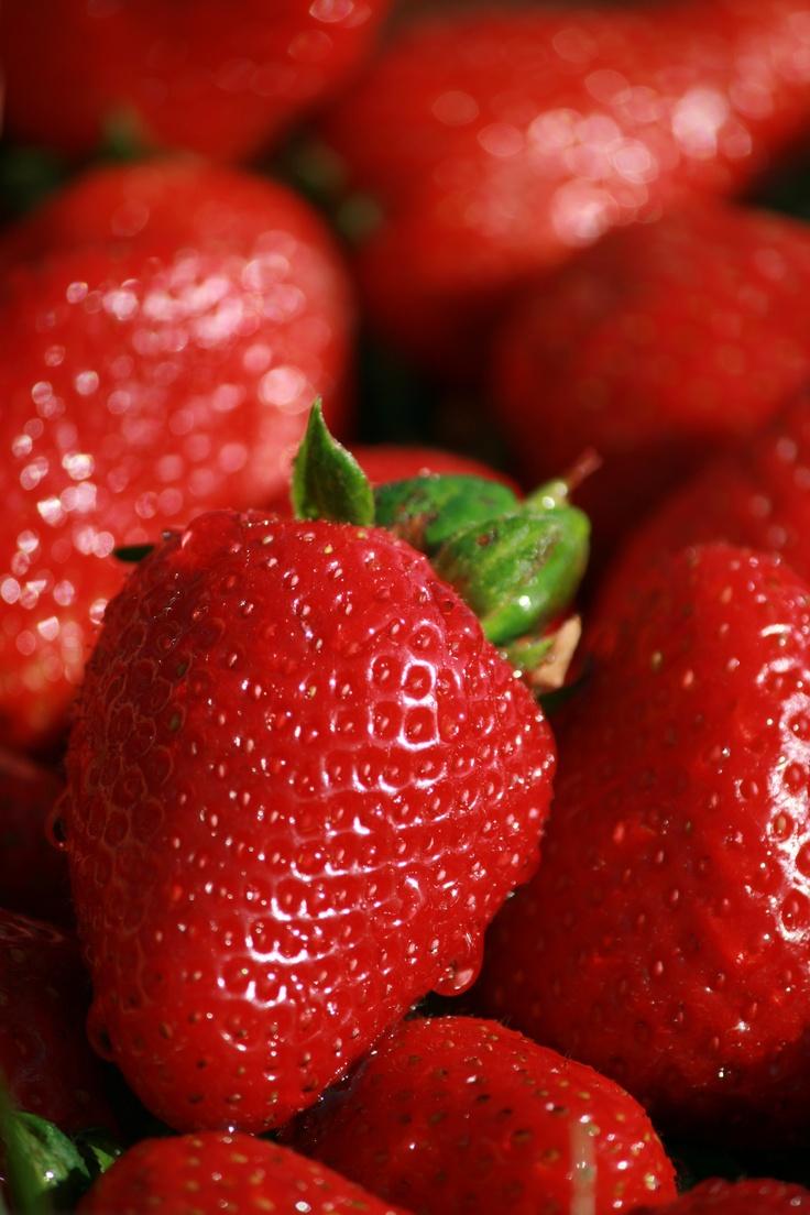 Fresh strawberries in the summer..