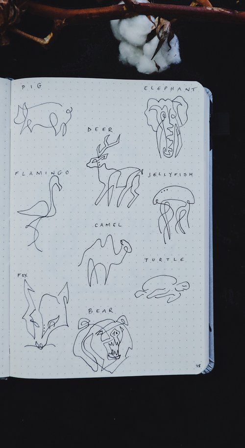 How To Draw Line Art Animals: A One Line Drawing Tutorial – Elisabeth Degraf