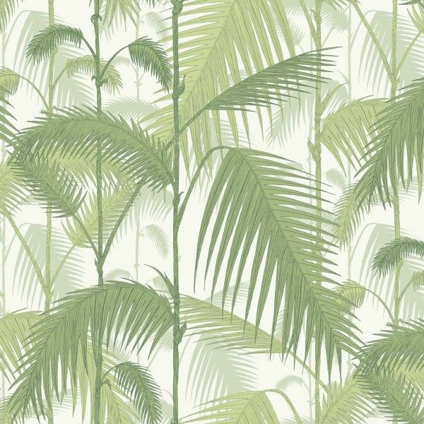 Cole and Son Palm Jungle 95/1001