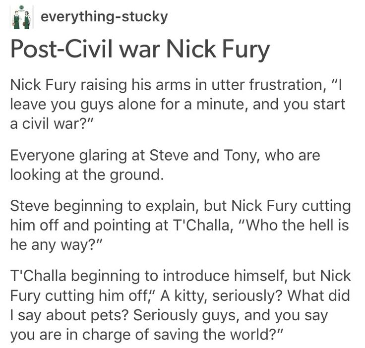 Nick fury director fury marvel mcu avengers cacw captain America civil war King t'challa of Wakanda black panther