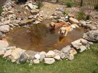 A Dogs Life, the real story: A water play pen