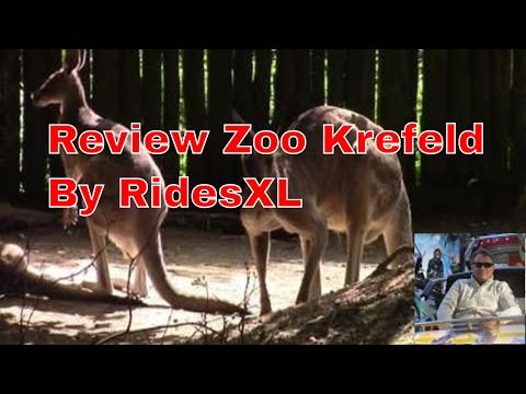Review Zoo Krefeld  2017