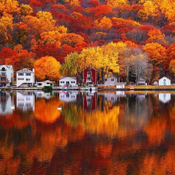 Прибрежная осень осень, Река, США, Америка, Коннектикут, красота, Природа, тэгивсеравнониктонечитает