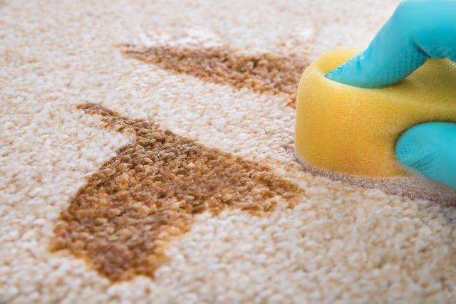 Így takarítsd ki a szőnyeget percek alatt, hogy tökéletesen tiszta legyen