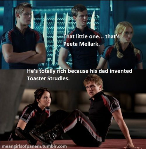Mean Girls meets The Hunger Games... Somebody's a genius.