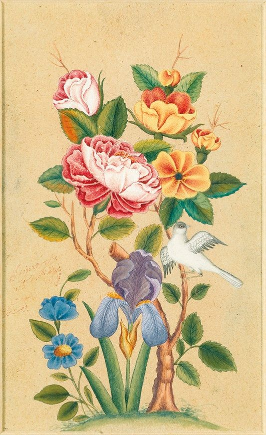 https://flic.kr/p/qXxhyA | BIRD AND FLOWER STUDIES | گل و مرغ، رقم فرصت الشیرازی، قرن 19 ميلادي، آبرنگ روی کاغذ. 14.5 در 10سانتیمتر BIRD AND FLOWER STUDIES, SIGNED BY FURSAT SHIRAZI, PERSIA, 19TH CENTURY Watercolour drawings on paper,signed in red ink. 14.5 by 10cm.