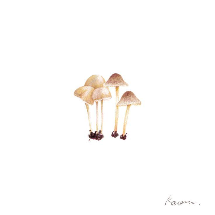 I want to go hunting mushrooms, I need an expert for that anyway🍄👄💀 ・ 狩りに行かなくても、道端にニョキニョキ生えてはいる。online store from here - https://www.etsy.com/shop/KaoruDesign /●●● #kaorudesignstudio #pensilart #Kaoru_D_store #Babynameposter #Keepsake #custombabygift #Personailsedartprint #Nurserydecorart #Babyroomdecor #Kidsroomwallart #Keepsake #命名書 ●●●