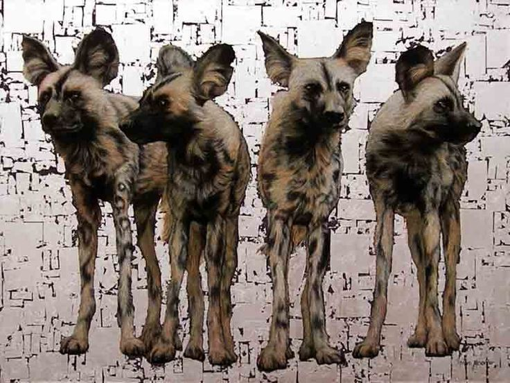 4 Wild Dogs, Oil and Silver Leaf on Canvas, 90cm by 120cm, (2013) by Marc Alexander