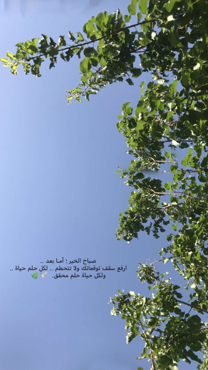 Pin By Teloo On صباح Cover Photo Quotes Sky Photography Nature Photo Quotes