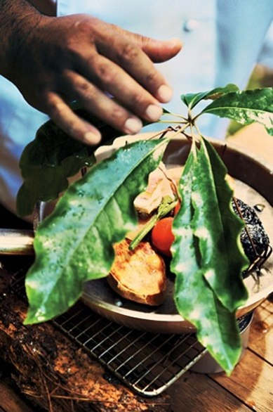 The Maori chef Eru Tutaki, at Treetops Lodge in the New Zealand's North Island's Horohoro Forest, fashions a new cuisine from foraged produce.