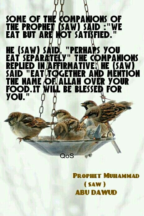 Hadith (saying) of Prophet Muhammad (saw) ABU DAWUD