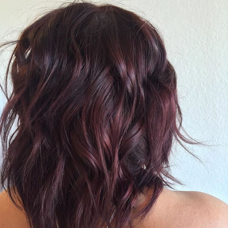 "Salon Red LA on Instagram: ""From deep brown to burgundy wine color by Carolyne…"