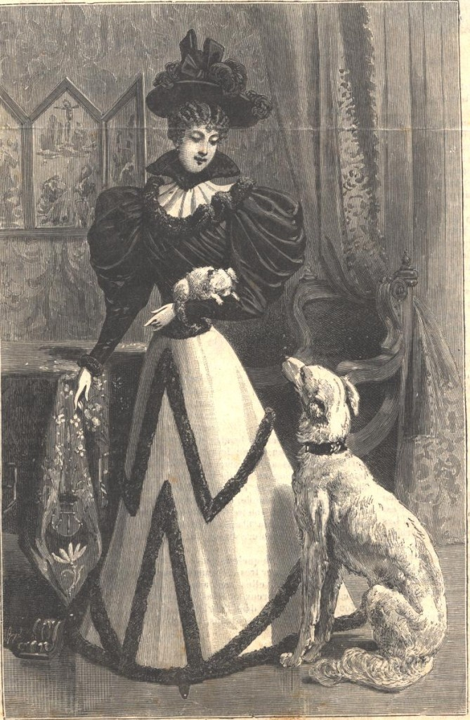 1894 lg a illustration french fashion saluki borzoi toilette de jeune femme