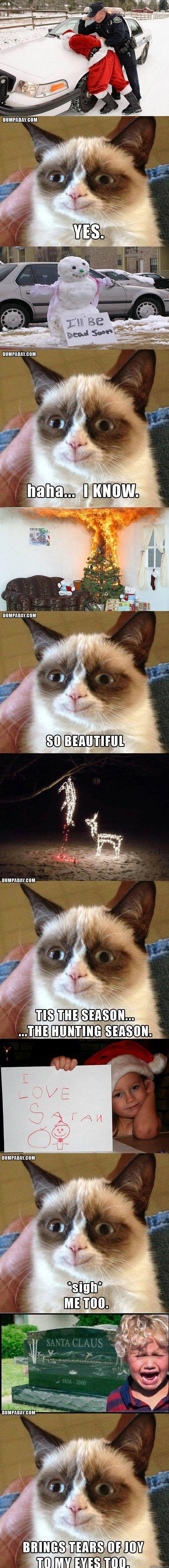 grumpy cat HAHA - happy and i love it haha!