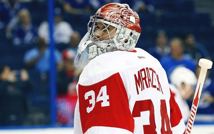 Download wallpapers Peter Mrazek, NHL, Detroit Red Wings, hockey, USA, Czech hockey player, goalkeeper, National Hockey League