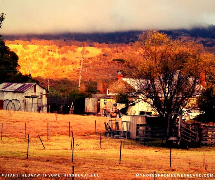 My Notes from New England: Tenterfield Top 10 - #6 The guardian of Mt McKenzie #startthedaywithsomethingbeautiful