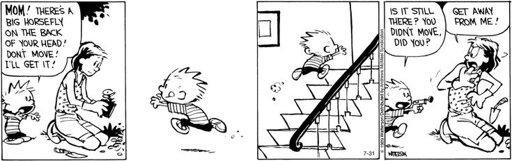 Calvin and hobbes by bill watterson for july 31 2019