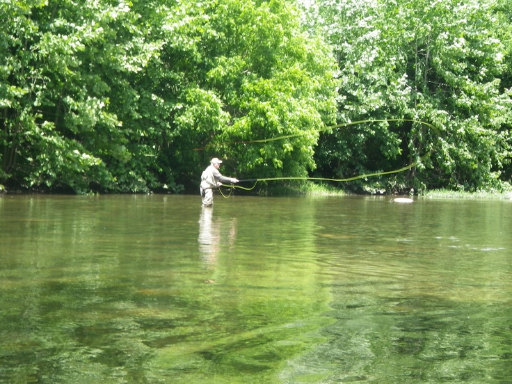 17 best images about fly fishing on pinterest santa cruz for Shenandoah national park fishing
