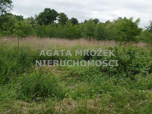działka, Smolec, 850m2, 43 000 PLN - otoDom.pl