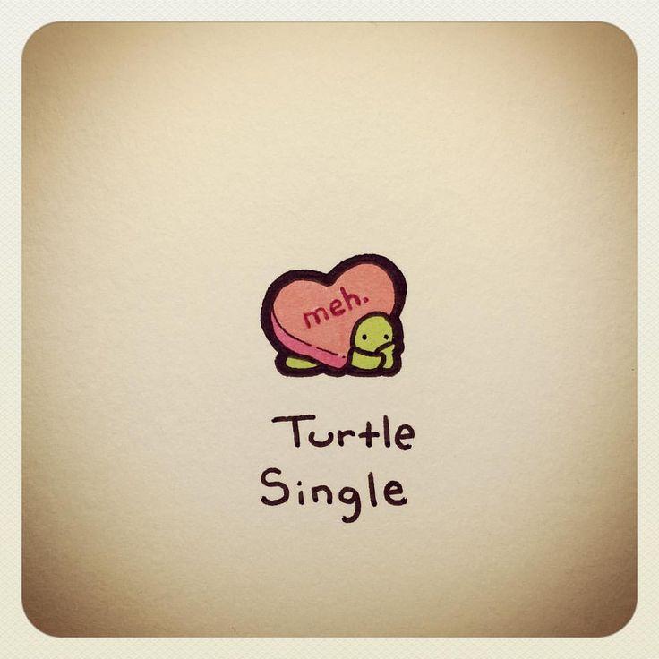 See this Instagram post by @turtlewayne • 489 likes