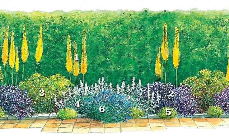 Die Pflanzenkombination eignet sich besonders für trockene, durchlässige Standorte, zum Beispiel wenn der Kiesstreifen am Haus in ein Beet umgewandelt werden soll