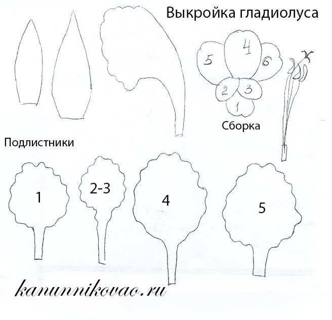 цветок гладиолус из бумаги выкройка - Поиск в Google