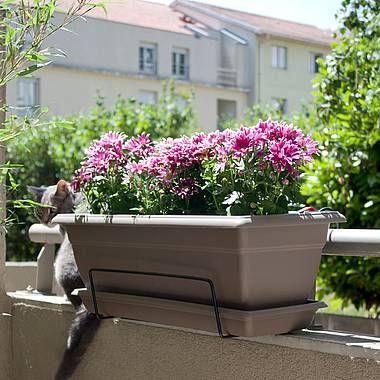 17 best images about pots et jardini res on pinterest belle planters and violets. Black Bedroom Furniture Sets. Home Design Ideas