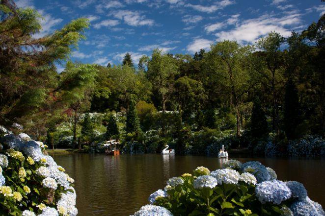 O lugar é ideal para férias em família ou casais, com diversão nos pedalinhos do Lago Negro e lindos bosques