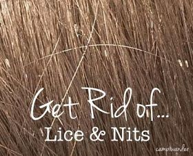 Best Way To Get Rid Of Nits Naturally